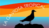 La Gaviota Tropical