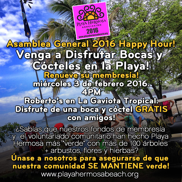 Asamblea General 2016 Happy Hour!